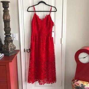 ASTR the Label Lace Midi Dress in Red Lipstick